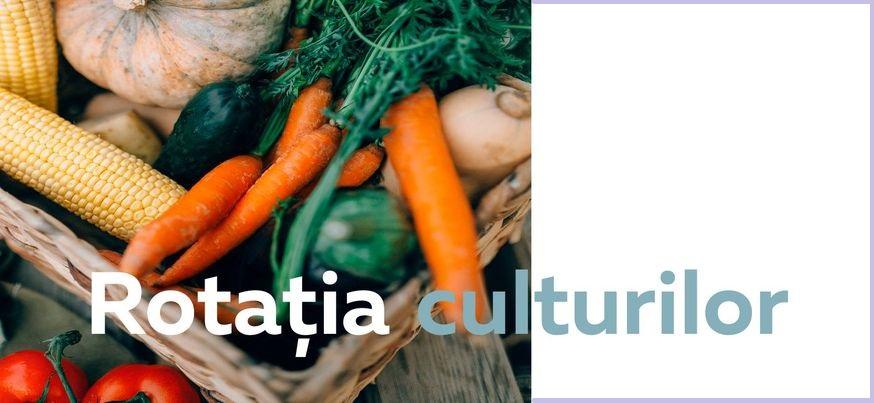 Rotația Culturilor