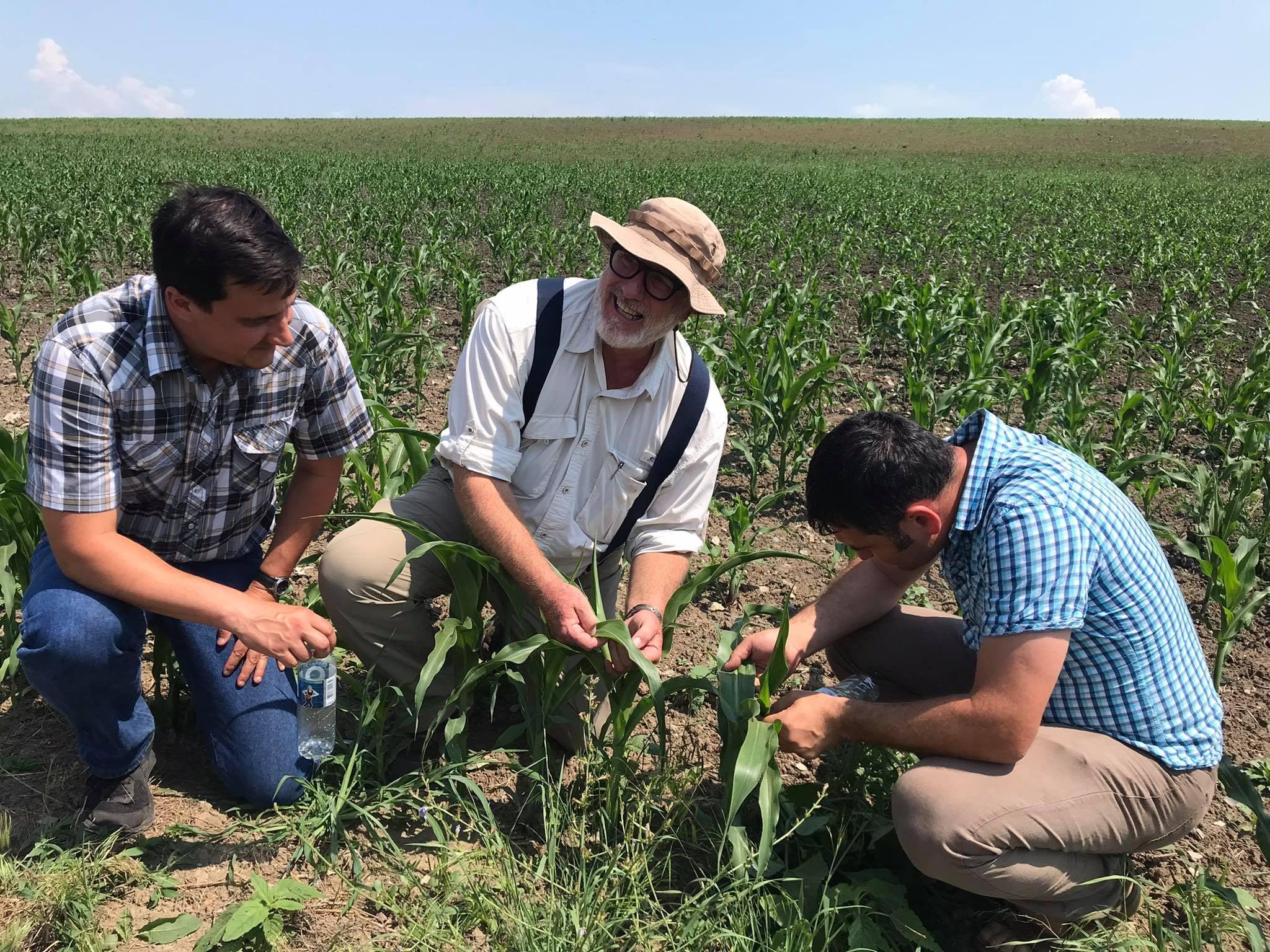 """Featured image for """"Un expert american le dezvăluie fermierilor moldoveni beneficiile îngrăşămintelor verzi"""""""